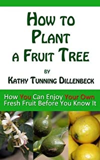 How to Plant a Fruit Tree: How You Can Enjoy Your Own Fresh Fruit Before You Know It