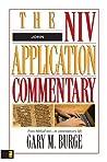 John (The NIV Application Commentary Book 4)