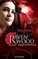 Gefangene der Dämmerung (Ravenwood, #2)