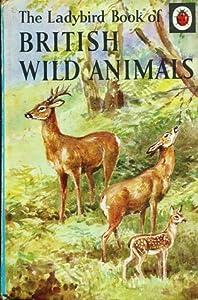 British Wild Animals