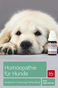 Homöopathie für Hunde: Symptome   Dosierung   Behandlung