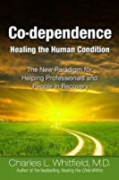 Co-Dependence Healing the Human Condition: The New Paradigm for Helping Professionals and People in Recovery