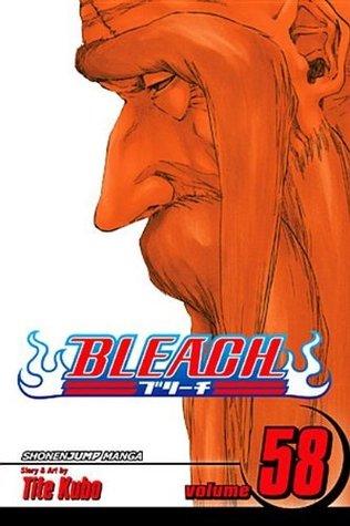 Bleach, Vol. 58: The Fire