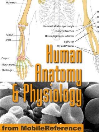 Human Anatomy and Physiology Study Guide (Mobi Medical)
