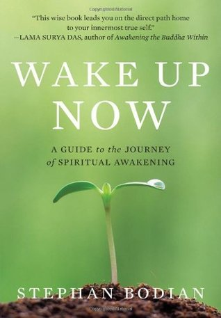 Wake Up Now: A Guide to the Journey of Spiritual Awakening by ...