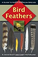 Bird Feathers: A Guide to North American Species (Birds Ornithology)