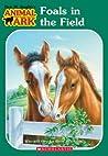 Foals in the Field (Animal Ark, #24)