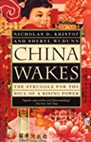 China Wakes: The Struggle for the Soul of a Rising Power (Vintage)