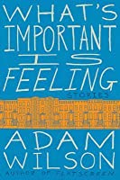 What's Important Is Feeling: Stories