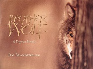 Brother Wolf: A Forgotten Promise