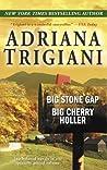 Big Stone Gap / Big Cherry Holler (Big Stone Gap, #1-2)