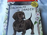 Dachshund in Danger (Pet Finders Club #8)