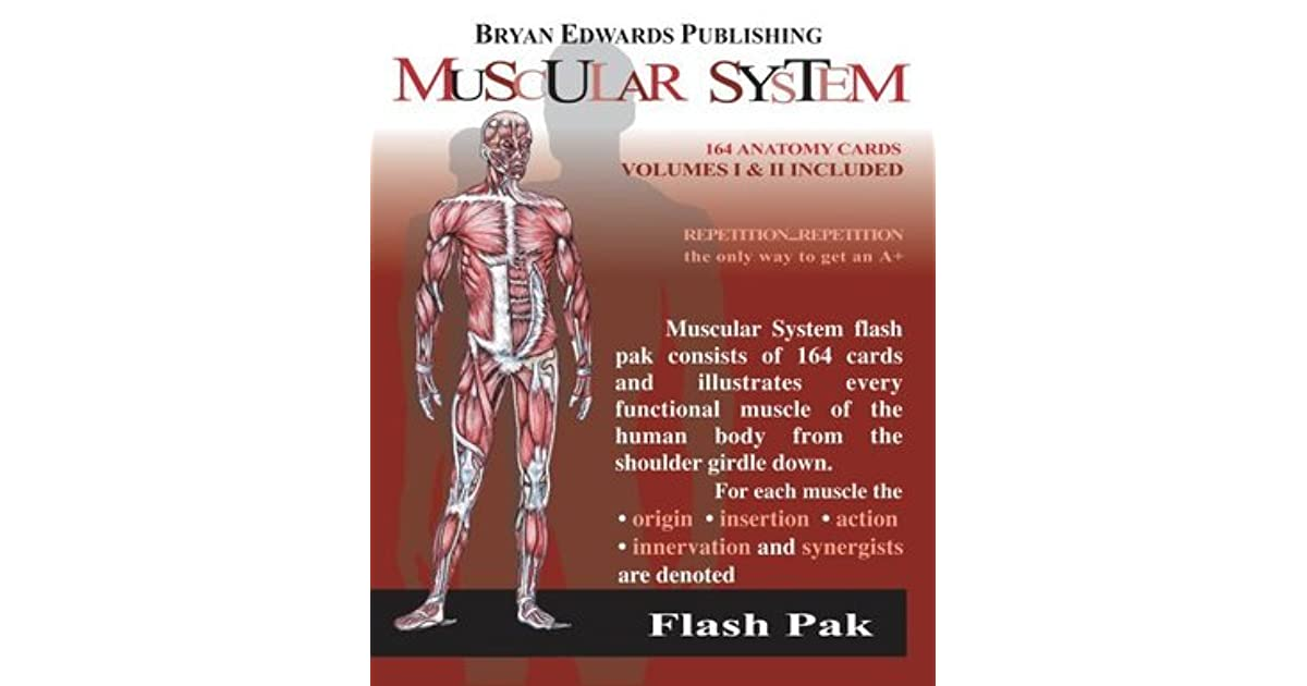 The Muscular System Flash Paksvolumes 1 And 2 By Flash Anatomy