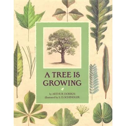A TREE IS GROWING EPUB DOWNLOAD