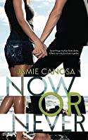 Now or Never (Fight or Flight, #2)