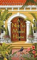 A Not So Model Home (An Amanda Thorne Mystery)