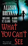 What You Can't See (Bullet Catcher, #3.5; Seven Deadly Sins, #.5)