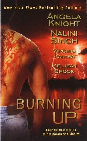 Burning Up by Angela Knight