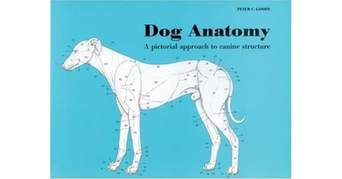 Dog Anatomy: A Pictoral Approach to Canine Structure by Peter Goody
