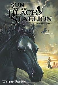 Son of the Black Stallion (The Black Stallion, #3)