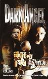 After the Dark (Dark Angel, #3)