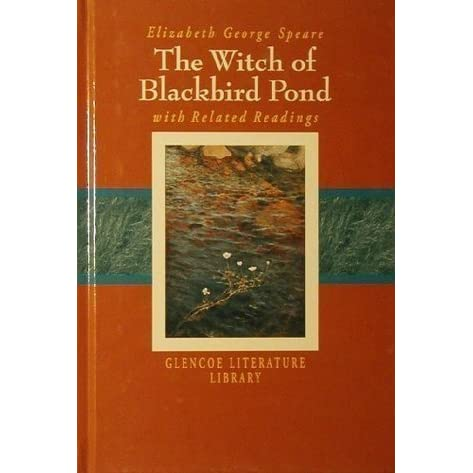 The Witch Of Blackbird Pond Summary