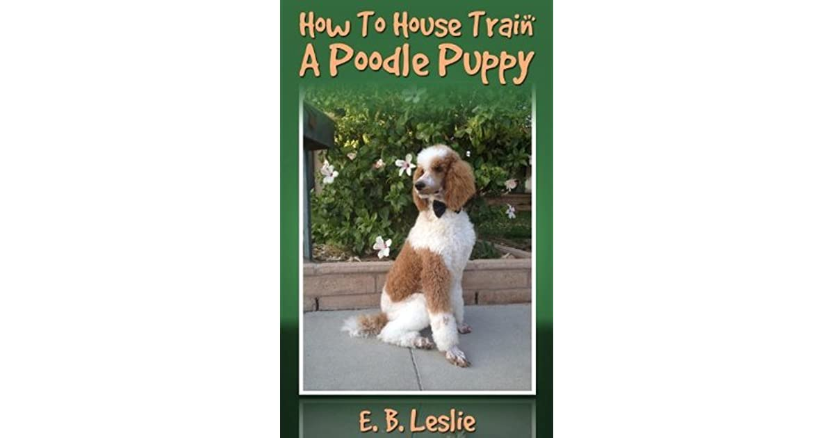 How To House Train A Poodle Puppy By E B Leslie