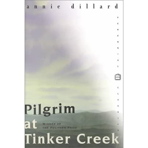 tinker creek summary Describe tinker creek before the storm for what reason is dillard concerned about the creatures who will survive the flood the water was receding.