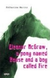 Eleanor McGraw, a Pony Named Mouse and a Boy Called Fire (Hawthorne Horses, #1)