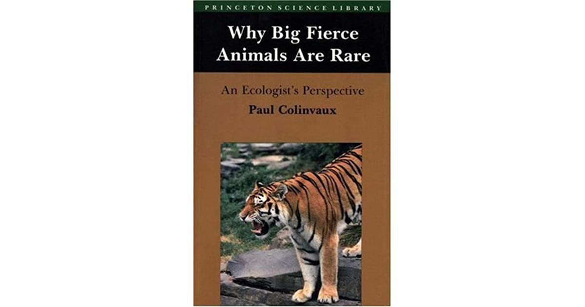 why big fierce animals are rare The reason why big fierce animals are rare is caused by humans humans may hunt animals such as tigers or whales for fur and skin etc we also take animal habitat once there was a rain forest .