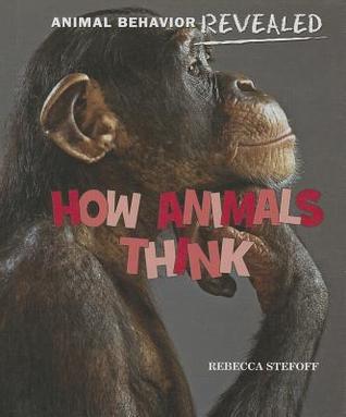 How Animals Think (Animal Behavior Revealed)