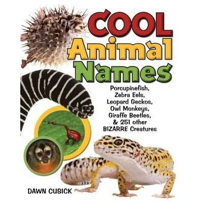 Cool animal names porcupine fish zebra eels leopard for Good fish names