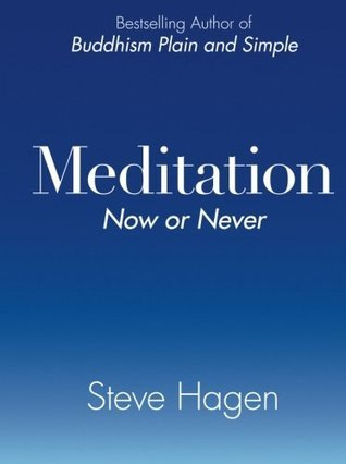 Meditation-Now-or-Never