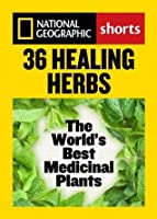 36 Healing Herbs: The World's Best Medicinal Plants (National Geographic Shorts)