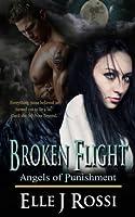 Broken Flight (Angels of Punishment)