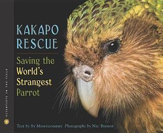 Saving the Worlds Strangest Parrot Kakapo Rescue