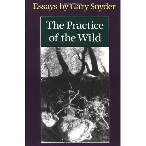 5 paragraph essay call of the wild