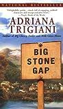 Big Stone Gap by Adriana Trigiani