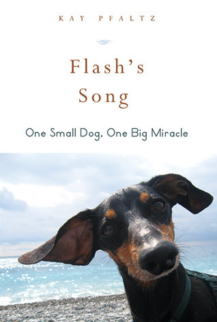 Flash's Song  How One Small Dog Turned into One Big Miracle
