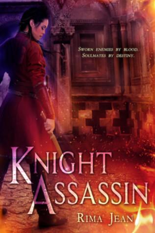 Knight Assassin by Rima Jean