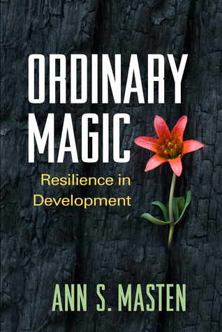 Ordinary-Magic-Resilience-in-Development