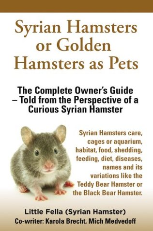 Syrian Hamsters or Golden Hamsters as Pets.