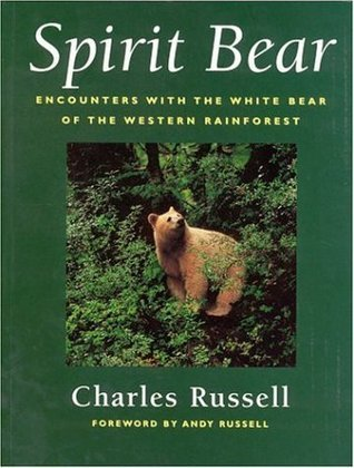 Spirit Bear Encounters with the White Bear of the Western Rainforest