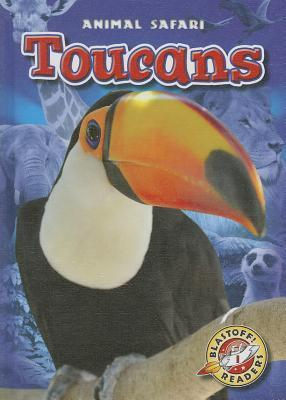 Toucans  by  Megan Borgert-Spaniol