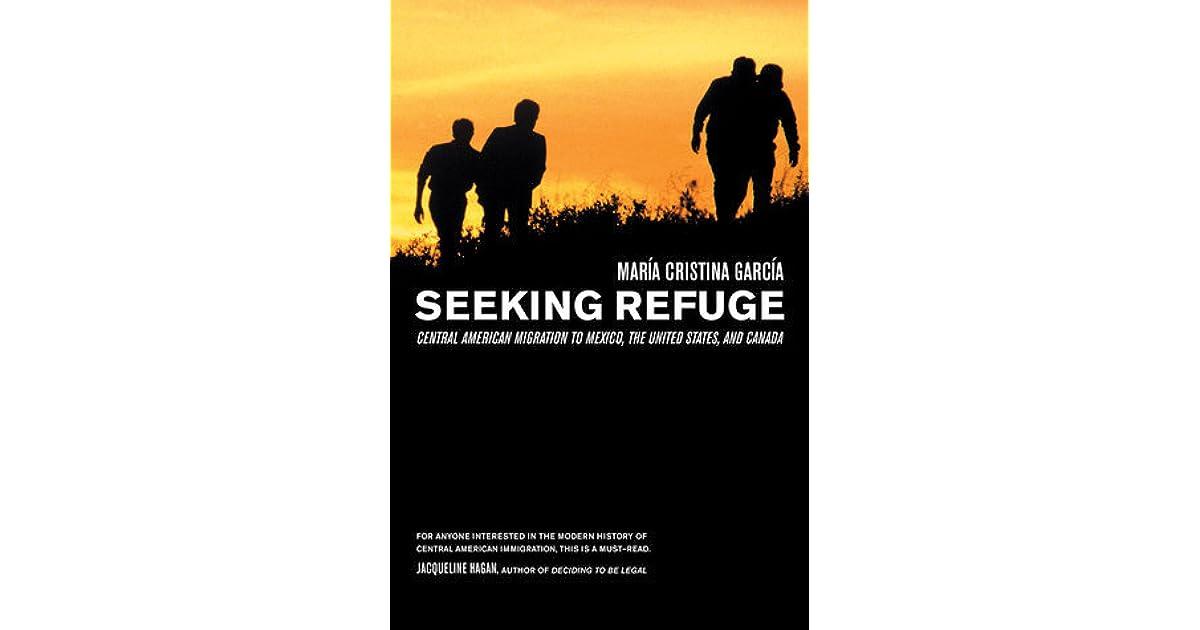 Seeking Sanctuary: A Novel by Frances Fyfield