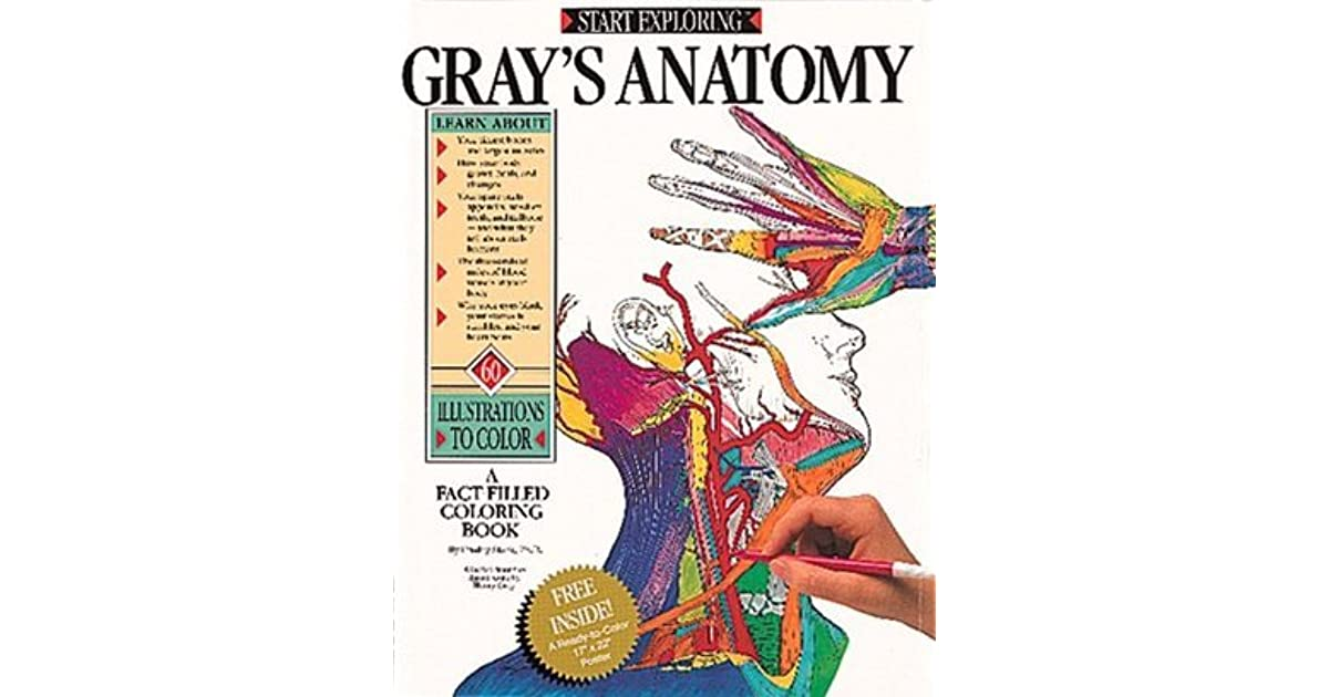 Grays Anatomy A Fact Filled Coloring Book By Freddy Stark