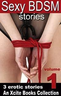 Sexy BDSM Stories - Volume One
