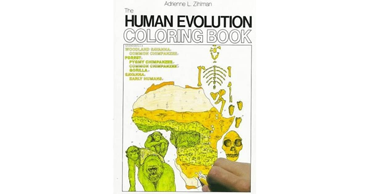 The Human Evolution-Coloring Book by Adrienne L. Zihlman