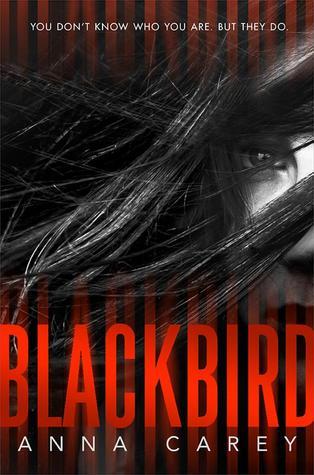 Blackbird (Blackbird, #1)