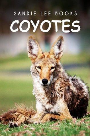 Coyotes - Sandie Lee Books (children's animal books age 4-6, wildlife photography, animal books nonfiction)